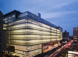 The Bronx Defenders' Law School Clinics