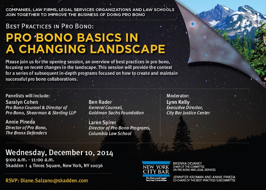 Pro Bono Basics in a Changing Landscape